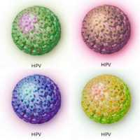 DAL PAP TEST ALL'HPV -DNA test